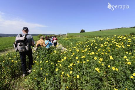 Passeggiando per Castellaneta