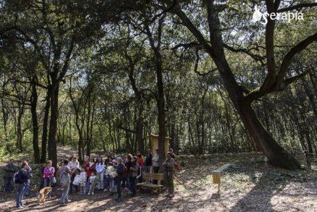 Escursione nel Bosco delle pianelle presso foggia Lama Cupa