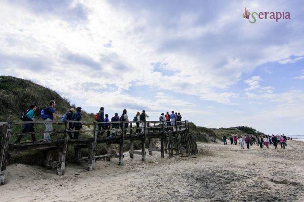 escursione nel parco delle dune costiere