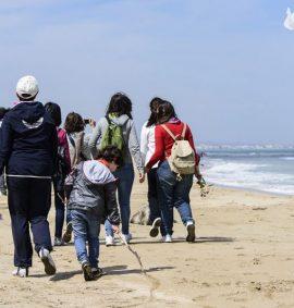 Parco Regionale delle Dune Costiere: spiaggia di Lido Morelli.