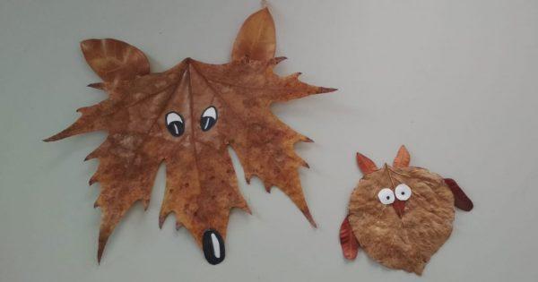 Laboratorio foglie
