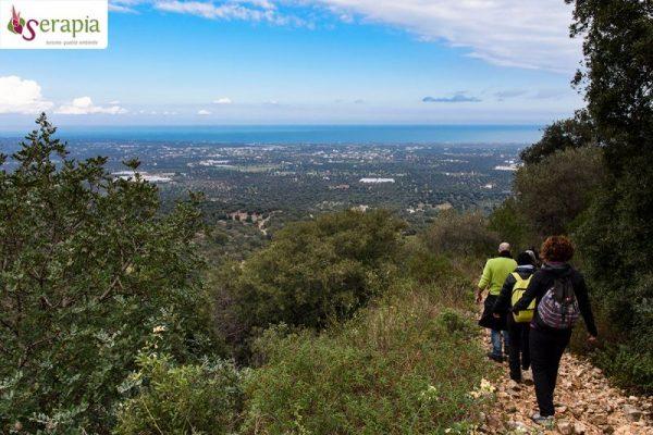 Trekking panoramico sui sentieri del SIC Murgia dei Trulli (Selva di Fasano)