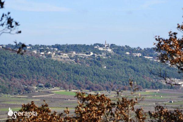 Selva di Fasano: vista sul il minareto (XX sec.)