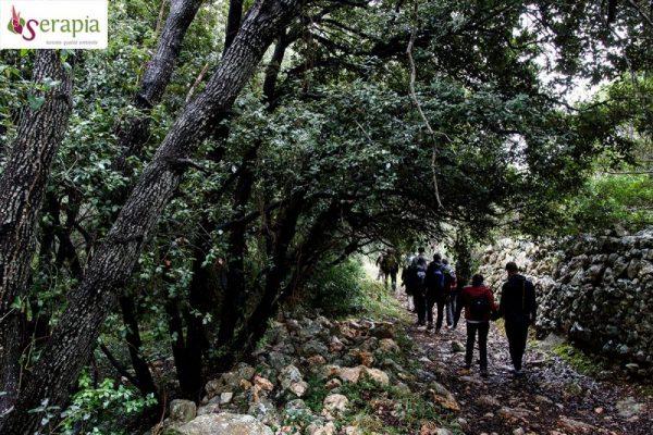 Trekking lungo i sentieri SIC della Selva di Fasano