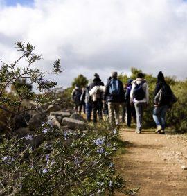 escursione sulla Murgia