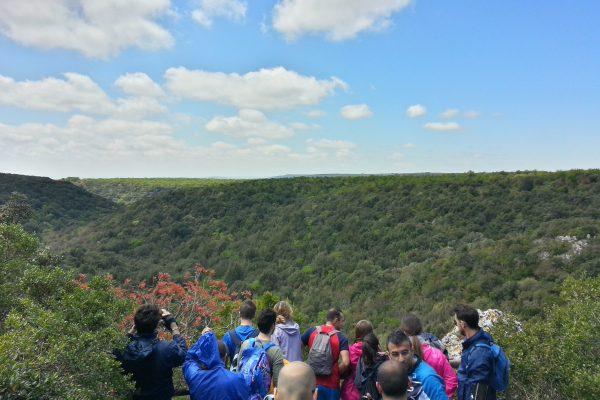 Panorama del Bosco delle Pianelle