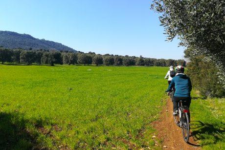 Escursione in bici sotto i colli di OStuni
