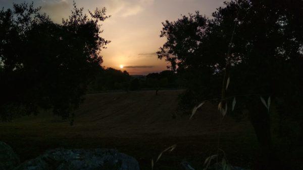 Valle d'itria al tramonto